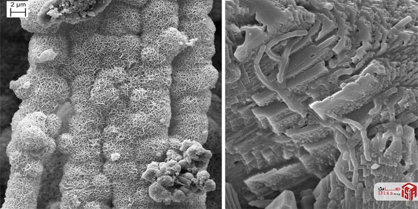 فرایند خود ترمیمی مبتنی بر باکتریها